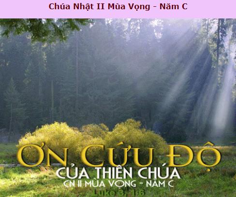 Suy Niệm - Chúa Nhật 2 Mùa Vọng - December 9 - Năm C