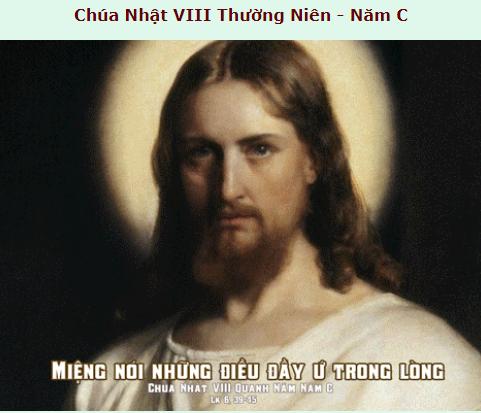 Suy Niệm - Chúa Nhật 8 Thường Niên - ngày 03 tháng 3 - Năm C
