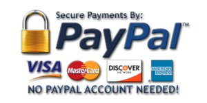 secure-payments-paypal_3d