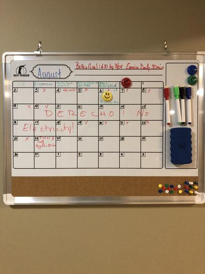 My mark-and-wipe calendar