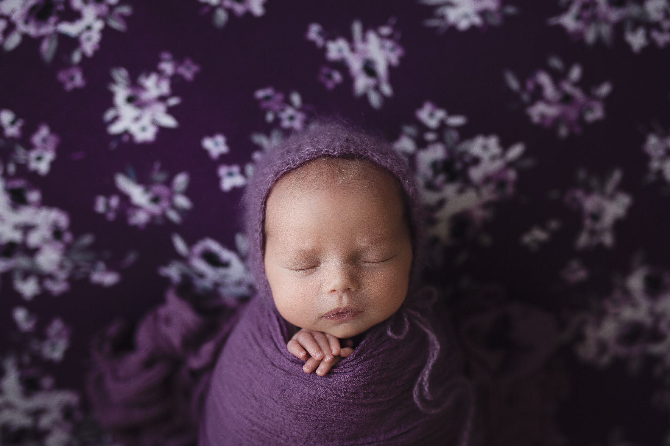 calgary newborn photography gallery
