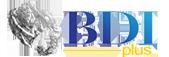 BDIPlus – Big Data & Customer Platforms Development