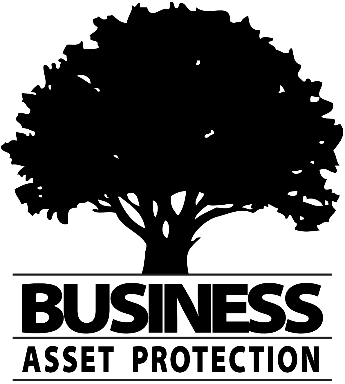 Business Asset Protection