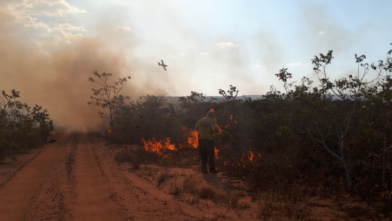 Brazilian Agricultural Aviation Rises to Assist in Amazon Wildfires.