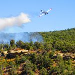 Firefighters knock back 105-acre fire in jack pines near Grayling