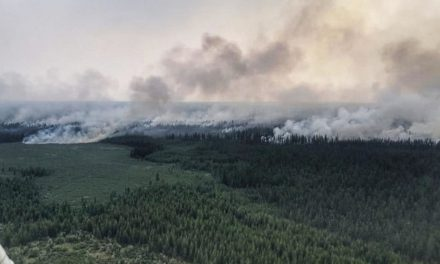 Siberian Wildfires Are Fully Extinguished, Authorities Say