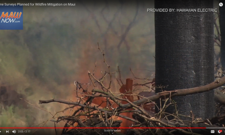 Video: Drone Surveys Planned for Wildfire Mitigation on Maui