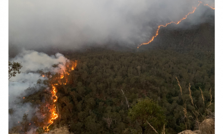 Two Firefighters Killed, Three Injured as New South Wales Fires Flare Again