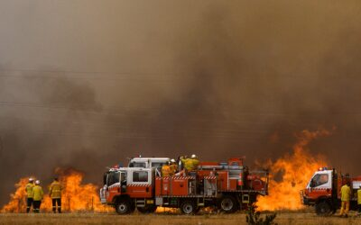 """""""It's a Worldwide Problem"""": How North American and Australian Firefighters Work Together"""