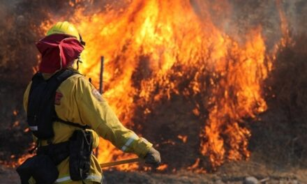 Aerial Firefighters Prepare For Elevated Coronavirus Risk During Wildland Fires