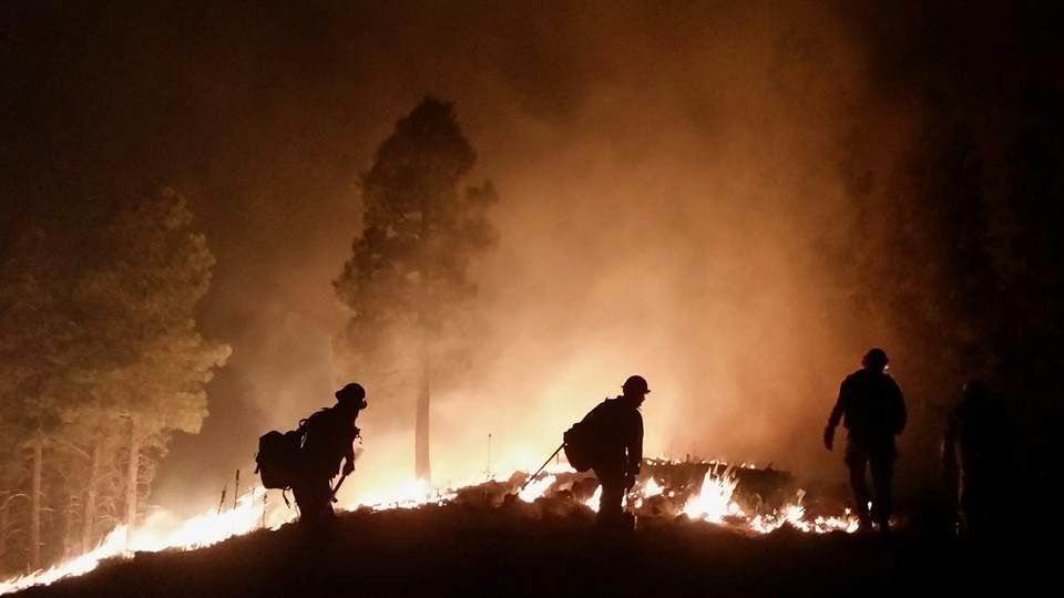 COVID-19 Could Make This Year's Wildfire Season More Dangerous