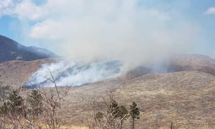 Crews Battling 60-Acre Wildfire on Old Hayman Burn Scar in Jefferson County