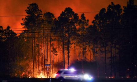 Florida Firefighters Battling Nearly 100 Wildfires Totaling Close to 16,000 Acres Across the State