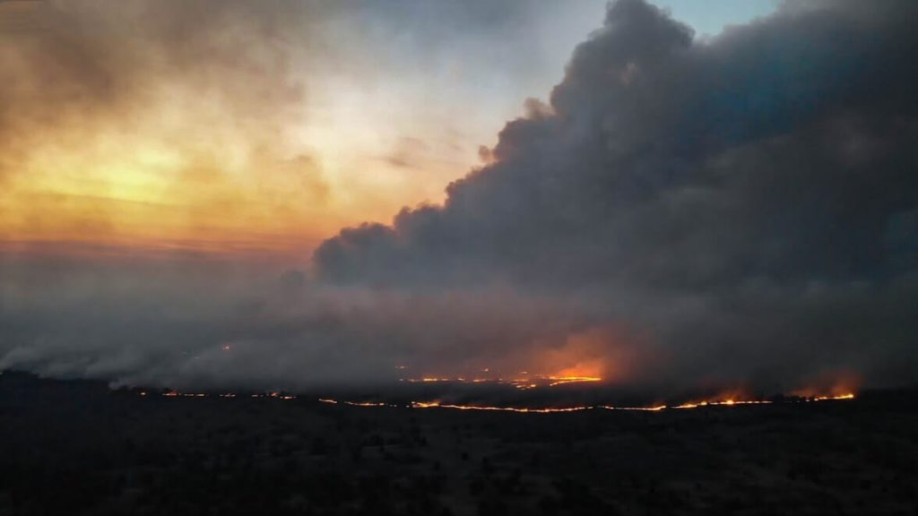 CASE STUDY: Chernobyl Wildfire Extinguished With Help of Drones