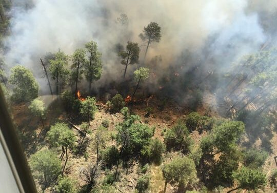 Several Fires Continue Spread in New Mexico
