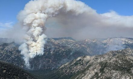 Fire season being held at bay — for now