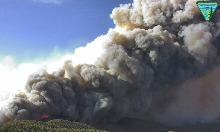 Mahogany Fire: Crews work to contain 2,794-acre wildfire on Mt. Charleston