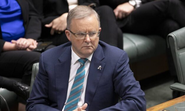 Bushfire recovery: Anthony Albanese blasts handling of recovery funds