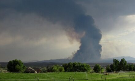 Fires south of Elko keeps growing
