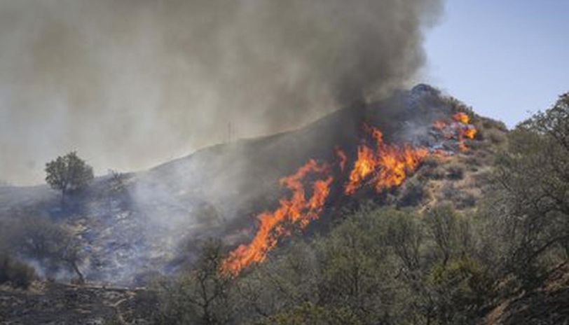 Wildfires Hit Siberian Nature Reserve