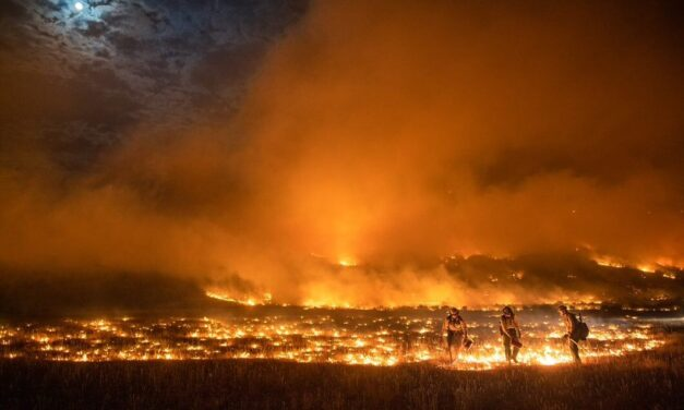 Pine Gulch fire grows 16,000 acres, now 5th largest in Colorado history