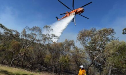 Federal Government rejected aerial fire fighting requests ahead of bushfires 'due to other priorities'