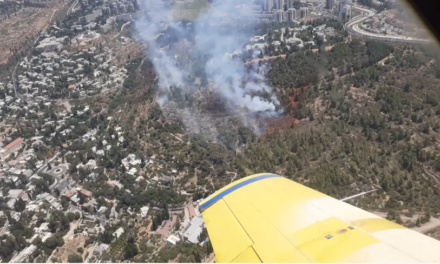 Firefighters battling forest fire in Jerusalem's Ein Kerem