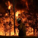 Bushfires inquiry convenes for final week