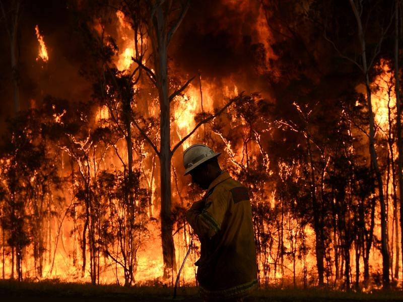 U.S Forest Service Releases Multi Year Report on Firefighting Use And Effectiveness