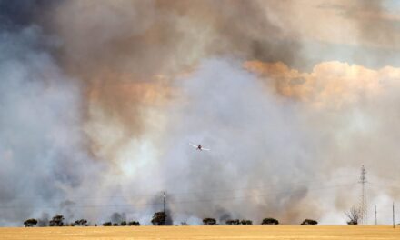 Bushfire near Freeling under control, but CFS on alert for change in weather