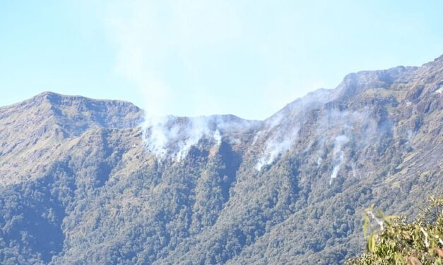 Dzukou: IAF resumes Bambi bucket operations to control wildfire