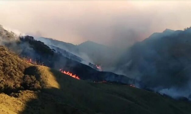 Dzukou Valley fire: Nagaland Government requisition IAF helicopter for fire fighting