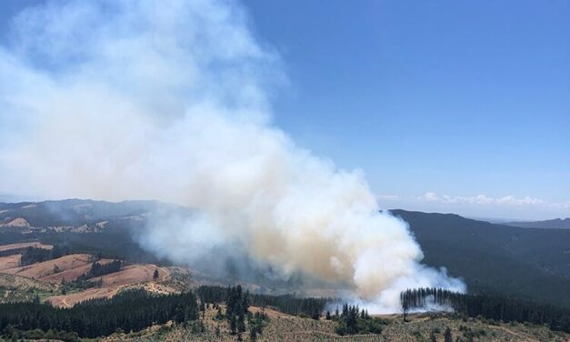 Tussock Fire continues to burn as aerial resources play crucial role in fire fight