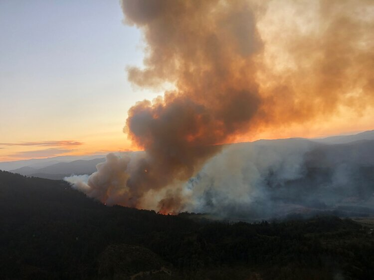 Translator Pilots Support Coulson Aerial Firefighting Across the Globe