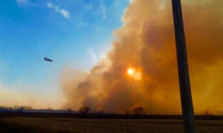 Wildfire burns nearly 1,000 acres in Jackson County