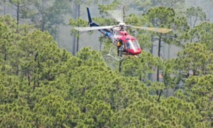 Flagler County Makes a Little History With Its First Aerial-Ignition Prescribed Fire at Princess Place
