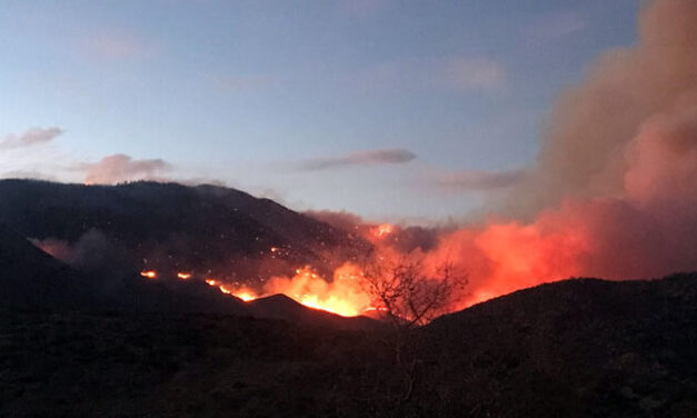 Pinnacle Fire at 2,200 acres with zero percent containment