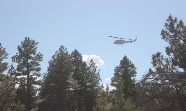 Department of Natural Resources Bell UH-1H Makes Hard Landing During Deep Creek Fire