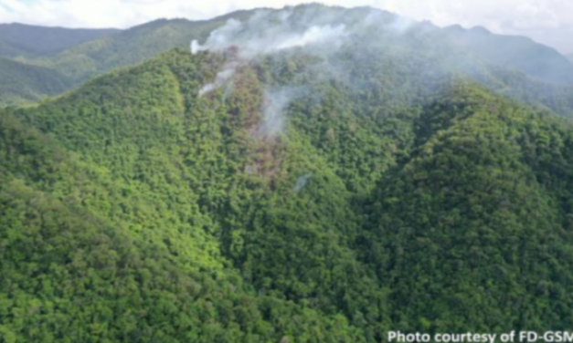 Forest Department considers use of aerial firefighting for fire near Sleeping Giant