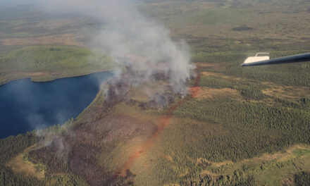 Aerial attack greatly reduces fire behavior on 150-acre Loon Lake Fire