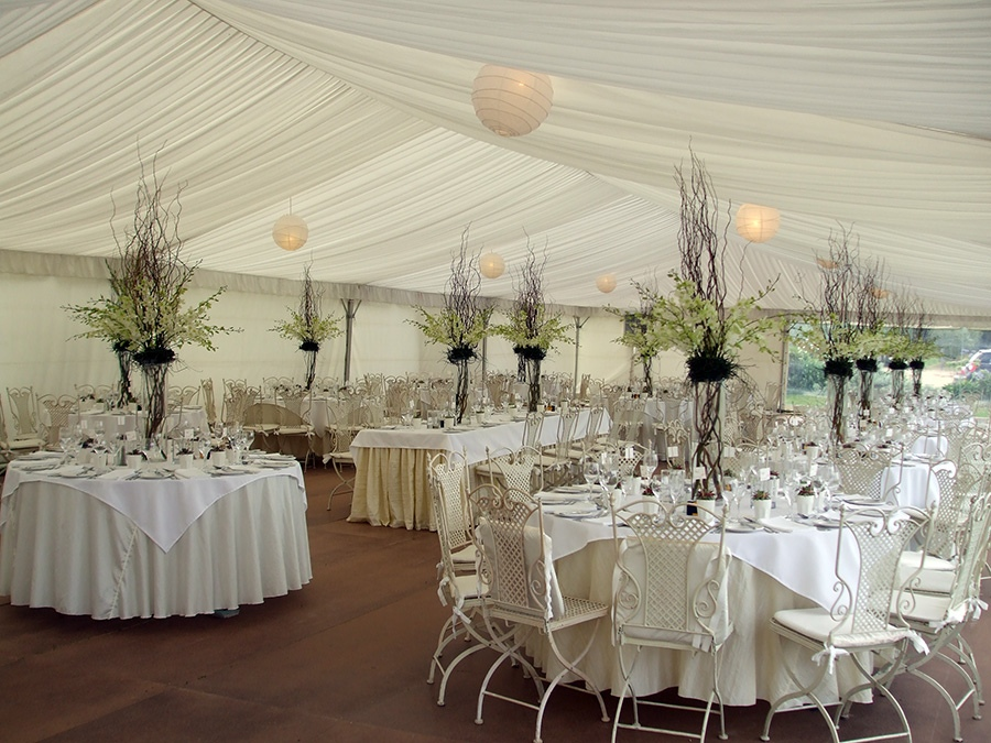 Singapore Orchids with Twisted Willow Wedding Table Centres