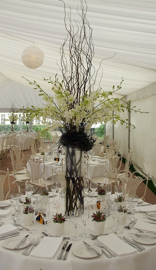 Singapore Orchid and Twisted Willow Table Centre