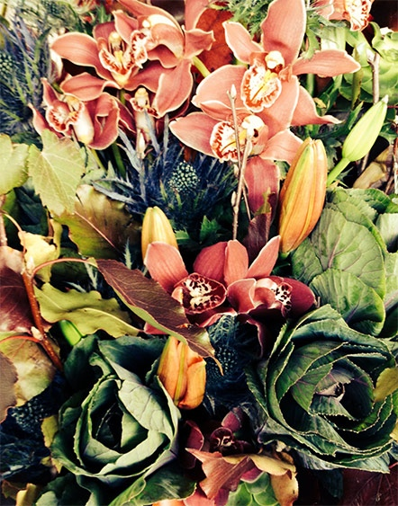 Autumn Blooms of Orchids Kale and Lilies