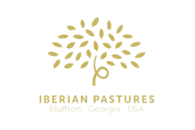 iberian-logo-resize
