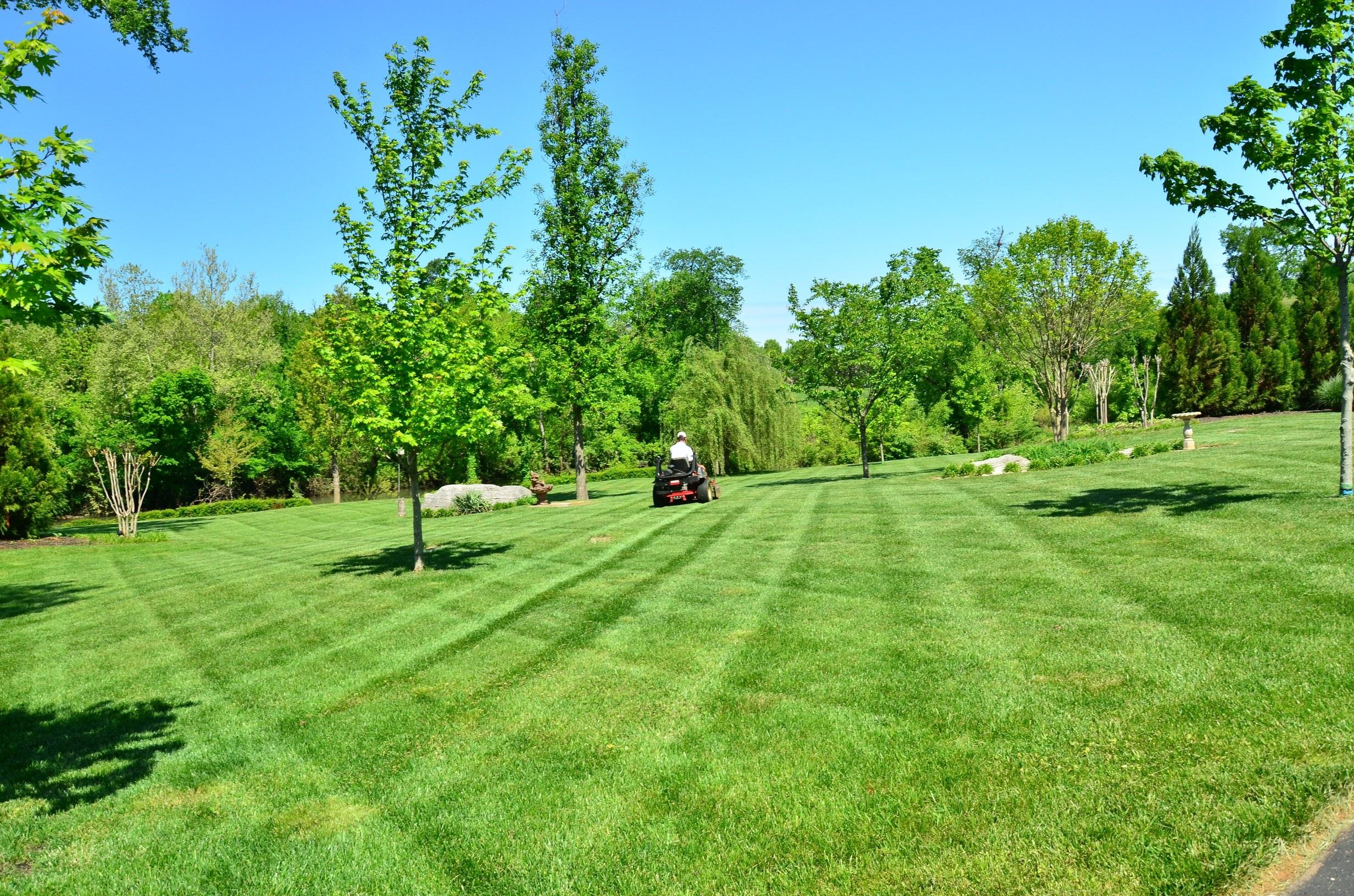 lawn-care-643557