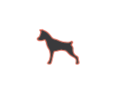 little dog creative