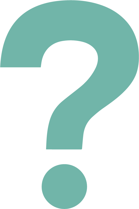 turq question