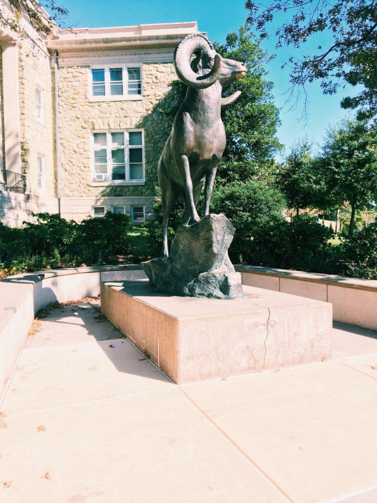 Campus, Rammy