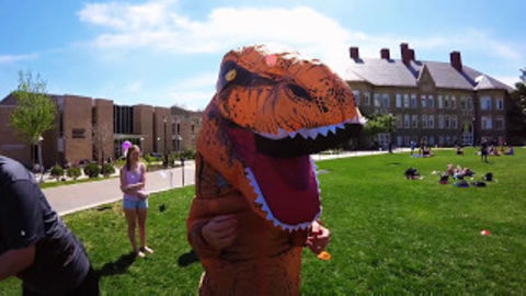Dino in the quad