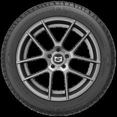 General Tire Altimax Arctic 12 | Winter
